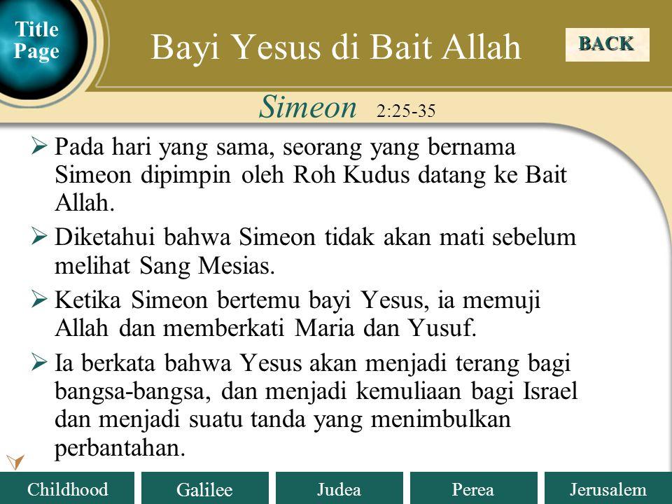 Bayi Yesus di Bait Allah