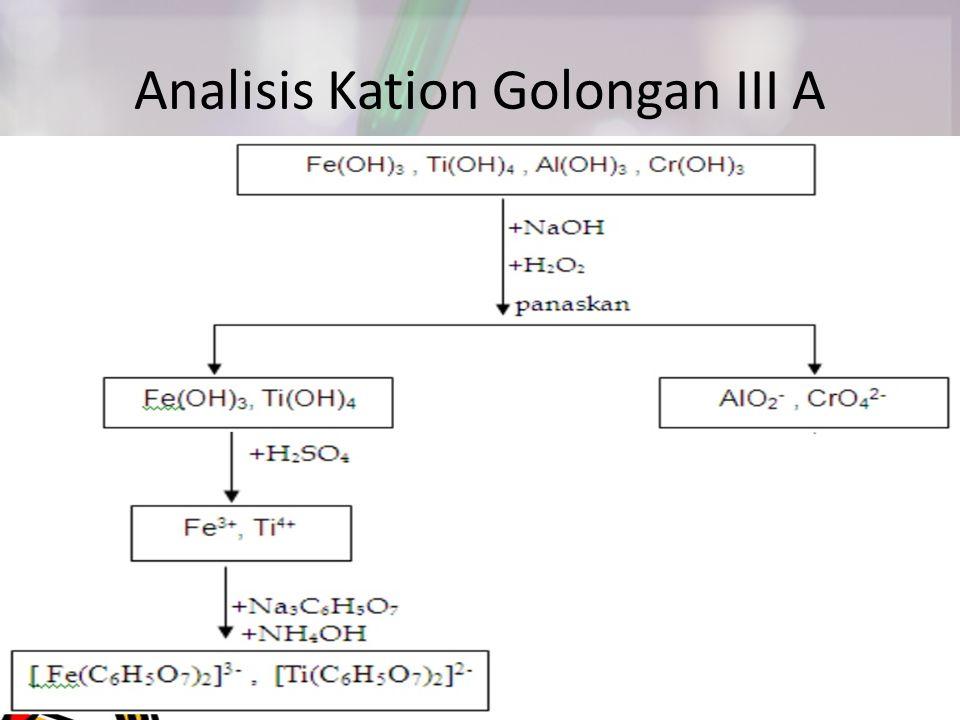 Analisis Kation Golongan III A