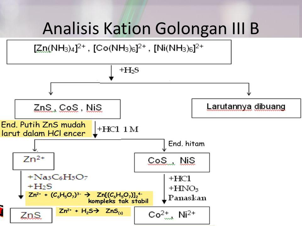 Analisis Kation Golongan III B