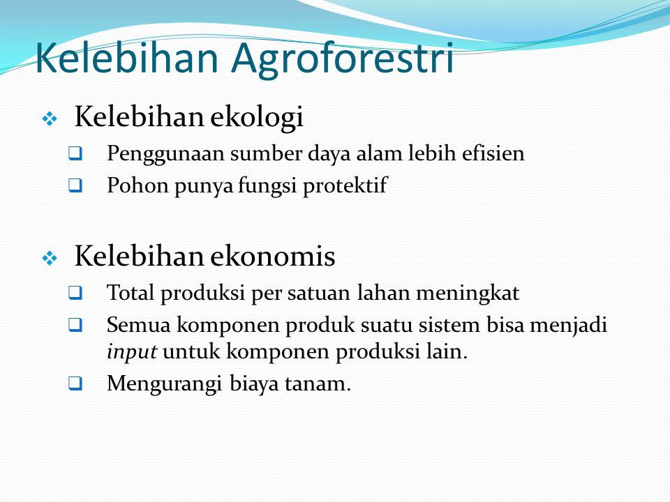 Kelebihan Agroforestri
