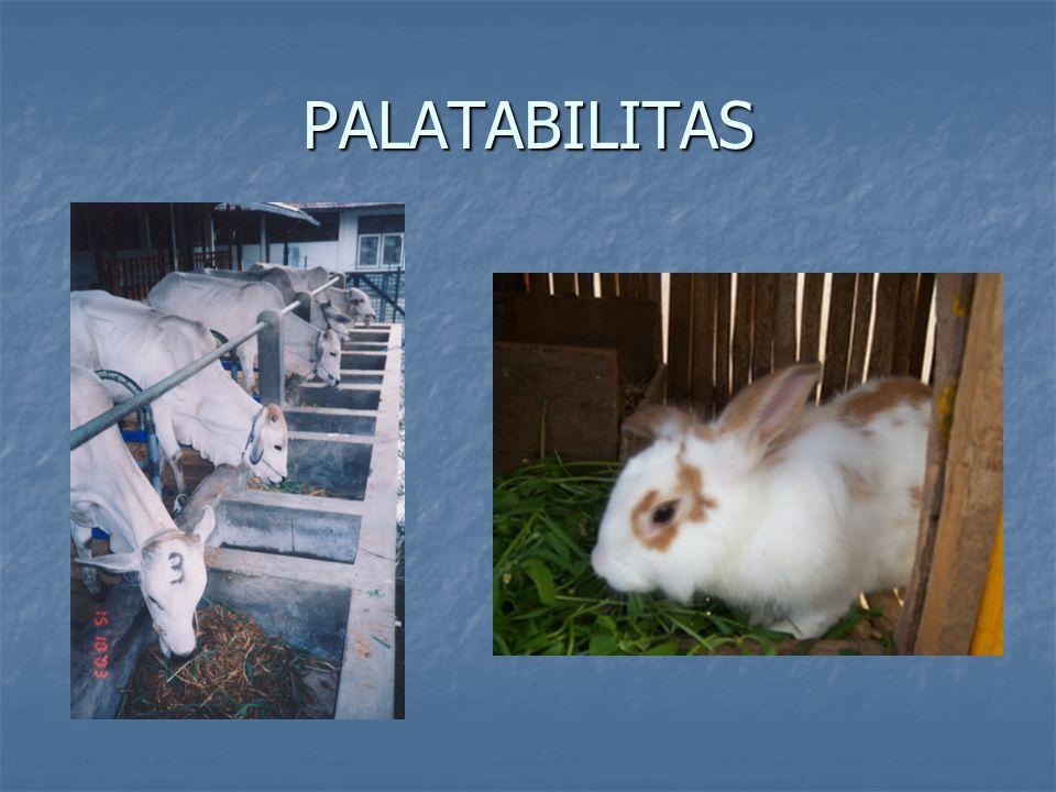 PALATABILITAS