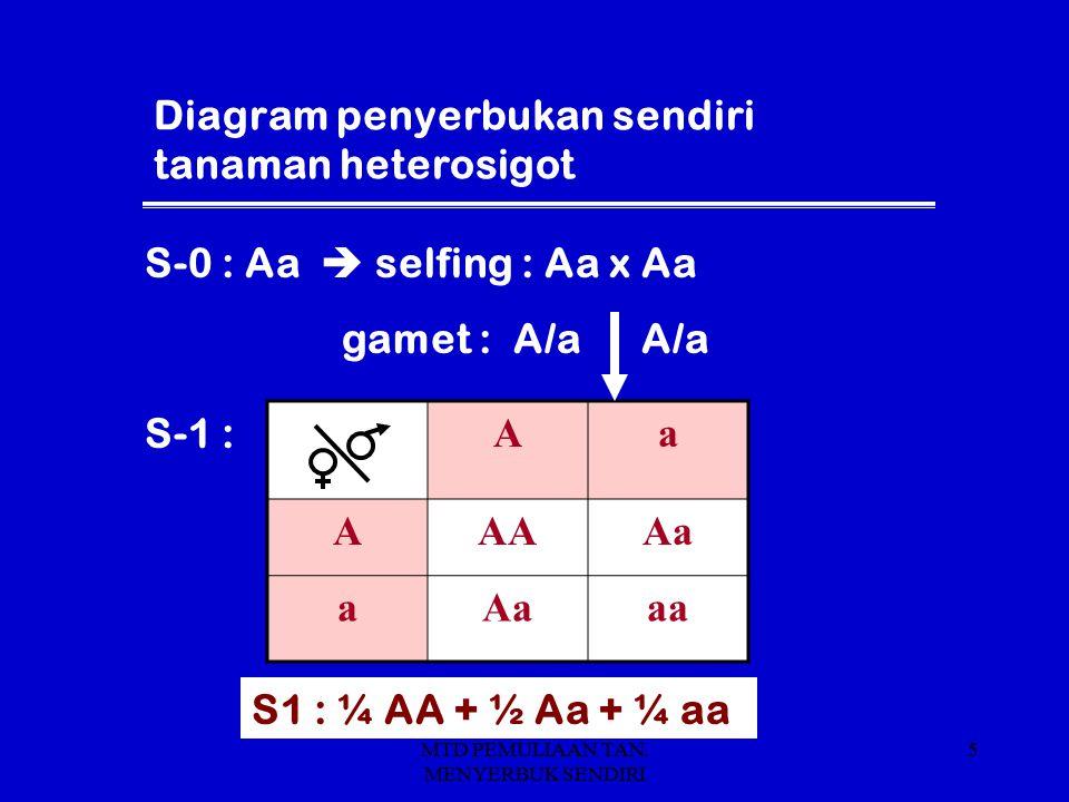 Diagram penyerbukan sendiri tanaman heterosigot