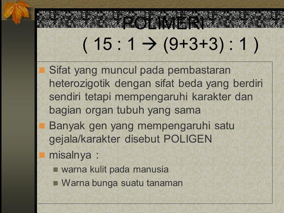 POLIMERI ( 15 : 1  (9+3+3) : 1 )