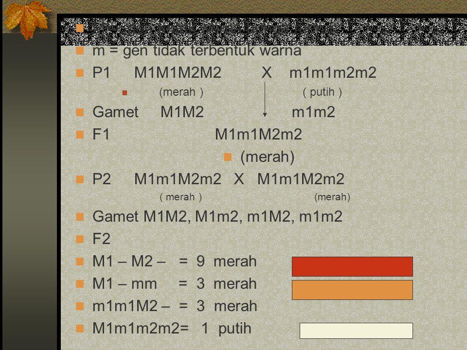 M = gen untuk warna bunga merah m = gen tidak terbentuk warna