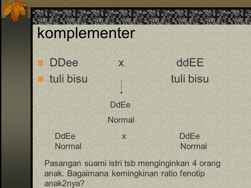 komplementer DDee x ddEE tuli bisu tuli bisu DdEe Normal DdEe x DdEe
