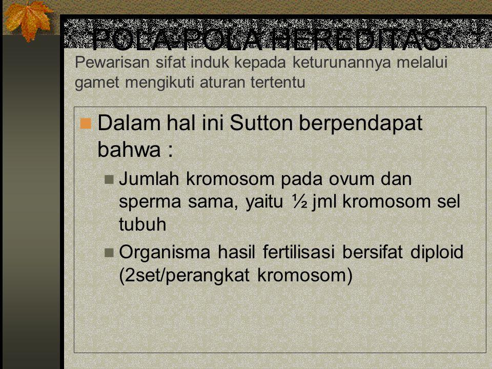 POLA-POLA HEREDITAS Dalam hal ini Sutton berpendapat bahwa :