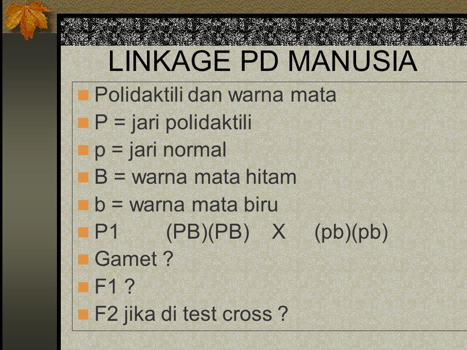 LINKAGE PD MANUSIA Polidaktili dan warna mata P = jari polidaktili