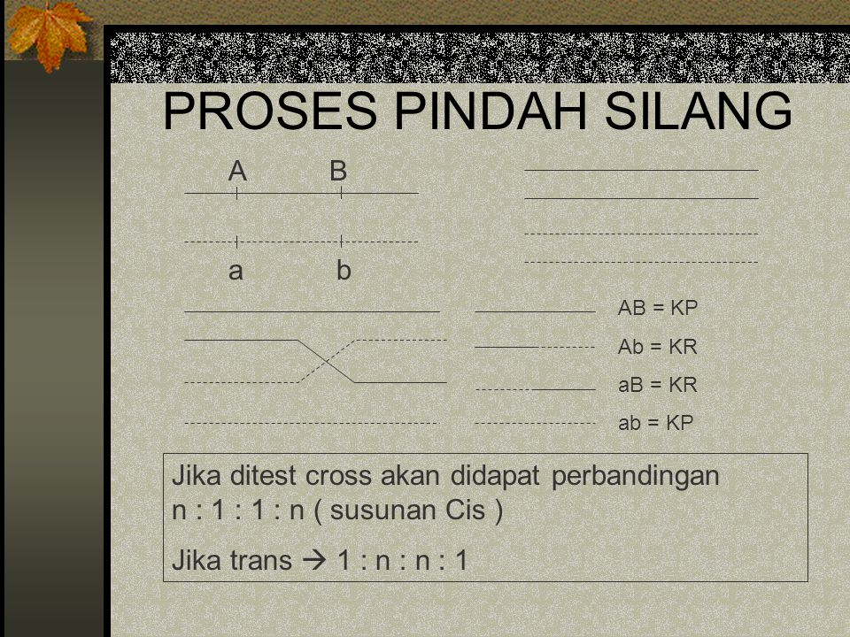 PROSES PINDAH SILANG A B a b