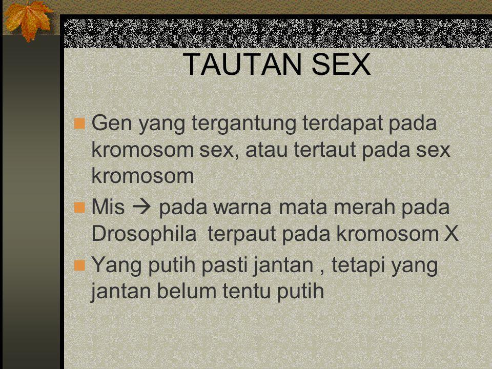 TAUTAN SEX Gen yang tergantung terdapat pada kromosom sex, atau tertaut pada sex kromosom.