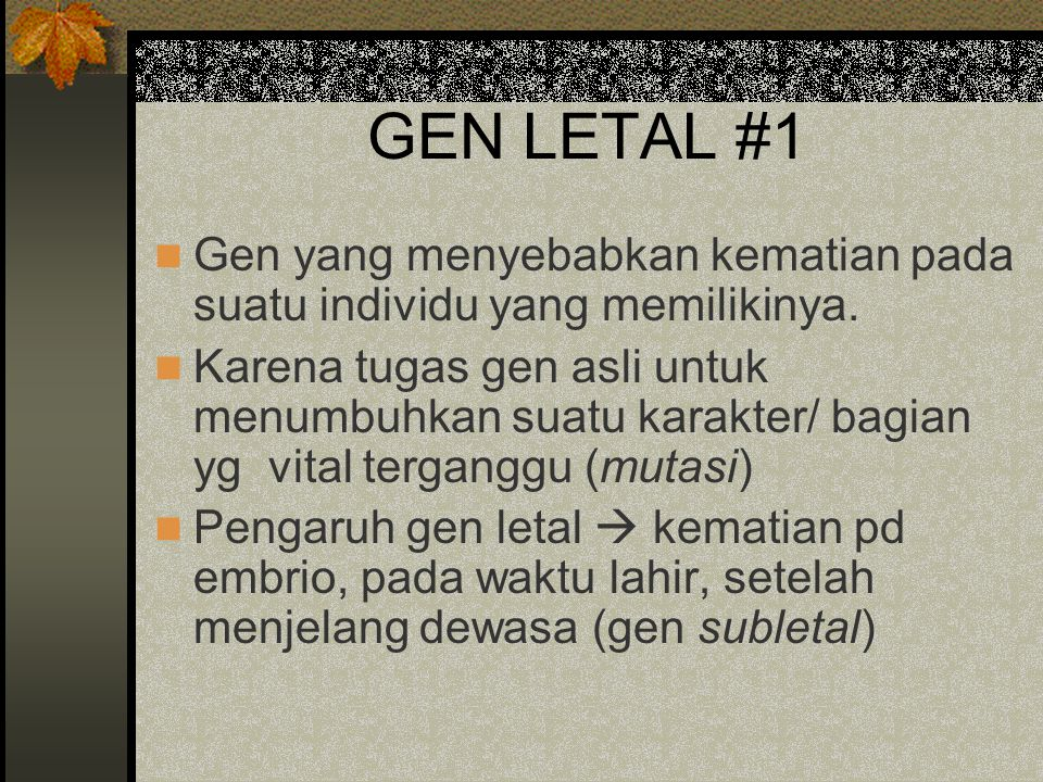 GEN LETAL #1 Gen yang menyebabkan kematian pada suatu individu yang memilikinya.
