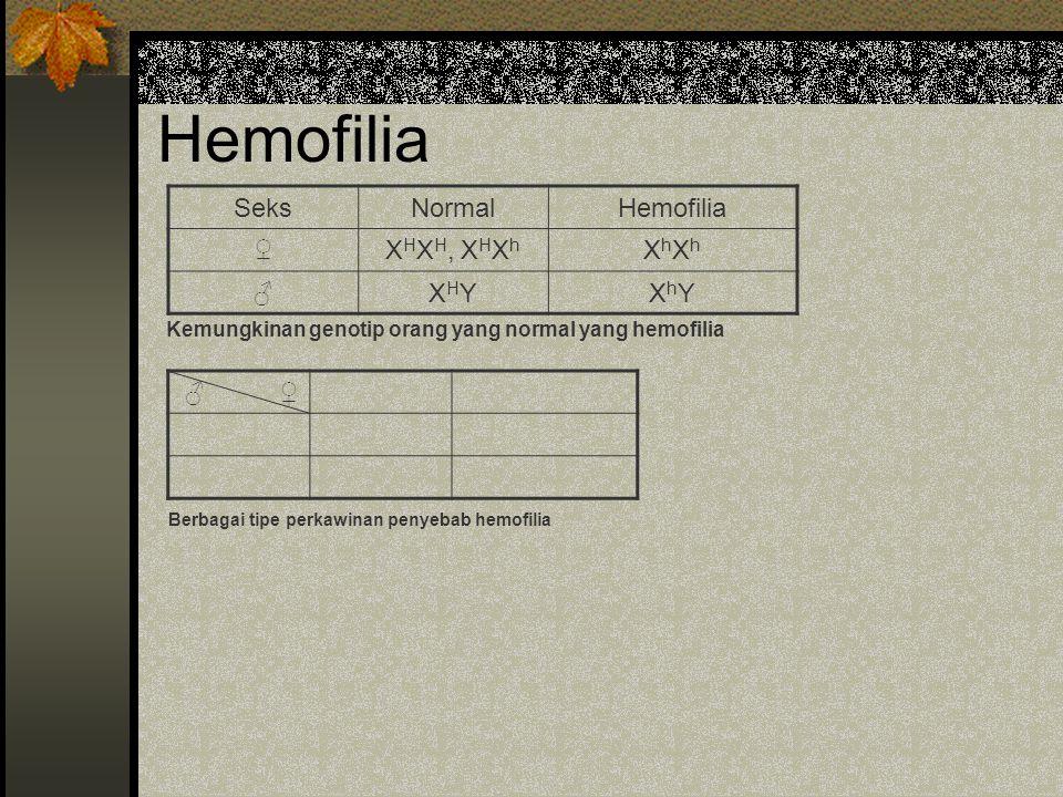 Hemofilia Seks Normal Hemofilia ♀ XHXH, XHXh XhXh ♂ XHY XhY ♂ ♀