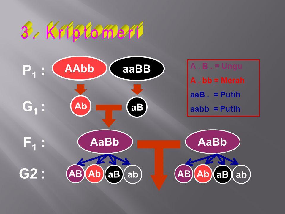 3. Kriptomeri P1 : G1 : F1 : G2 : AAbb aaBB AaBb AaBb Ab aB AB Ab aB