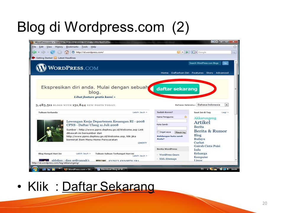 Blog di Wordpress.com (2)