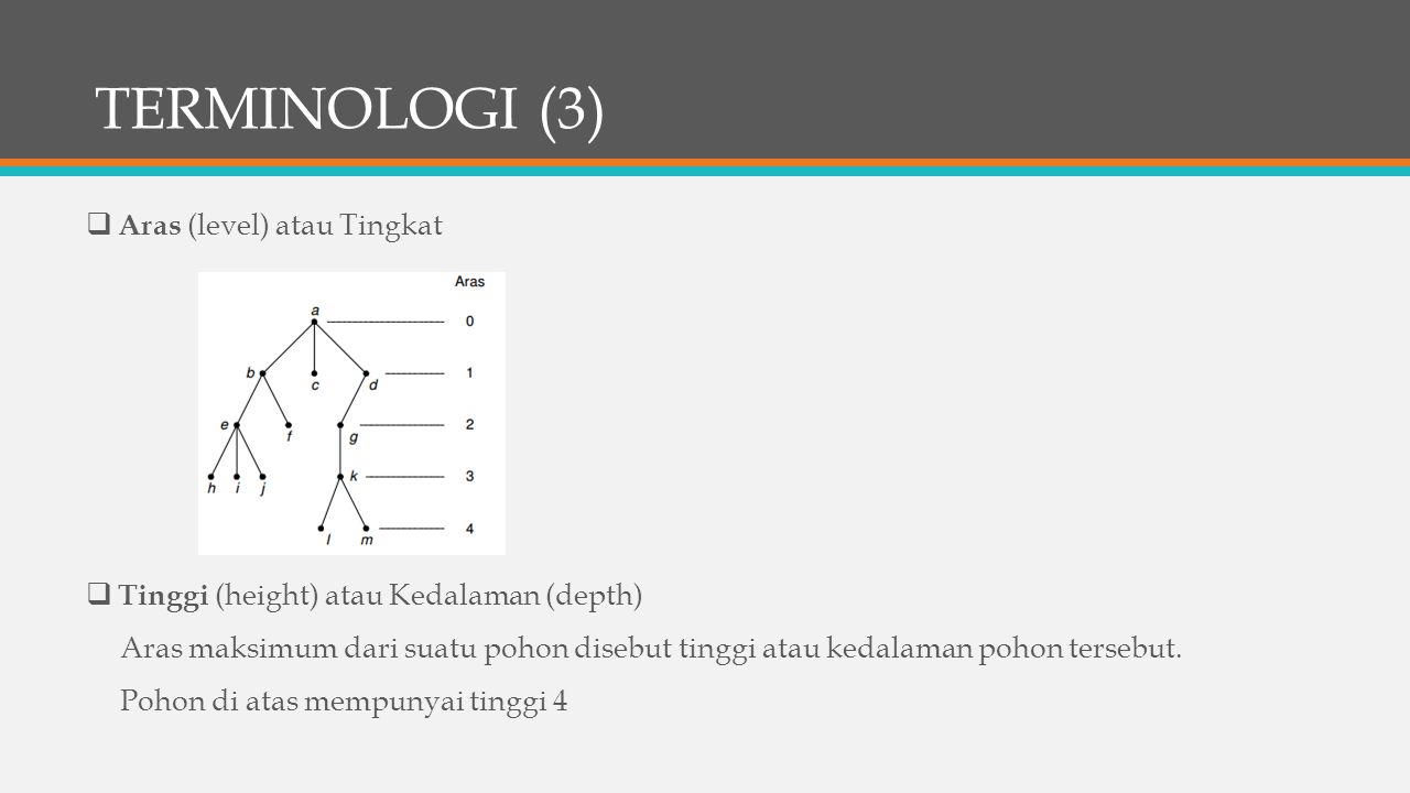 TERMINOLOGI (3) Aras (level) atau Tingkat