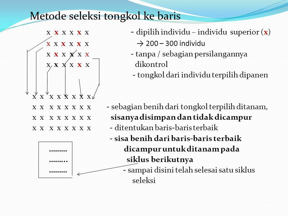 Metode seleksi tongkol ke baris