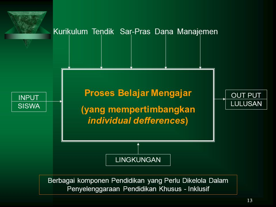 Proses Belajar Mengajar (yang mempertimbangkan individual defferences)