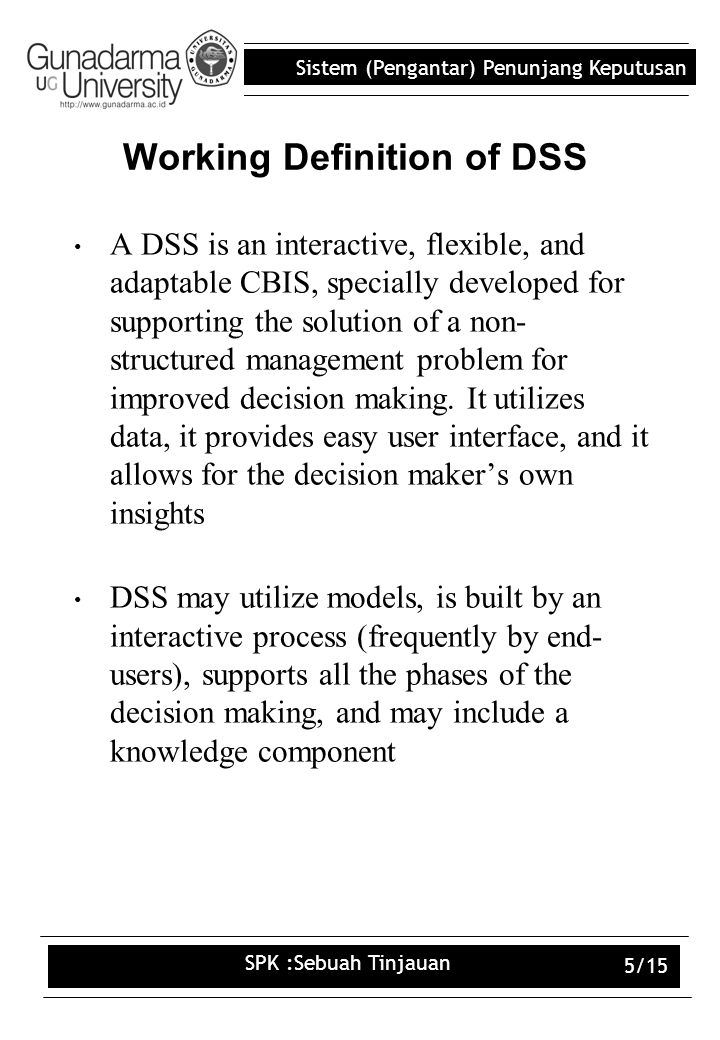 Working Definition of DSS