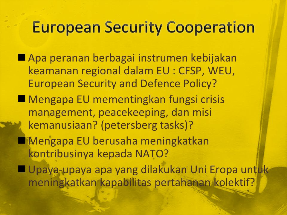 European Security Cooperation