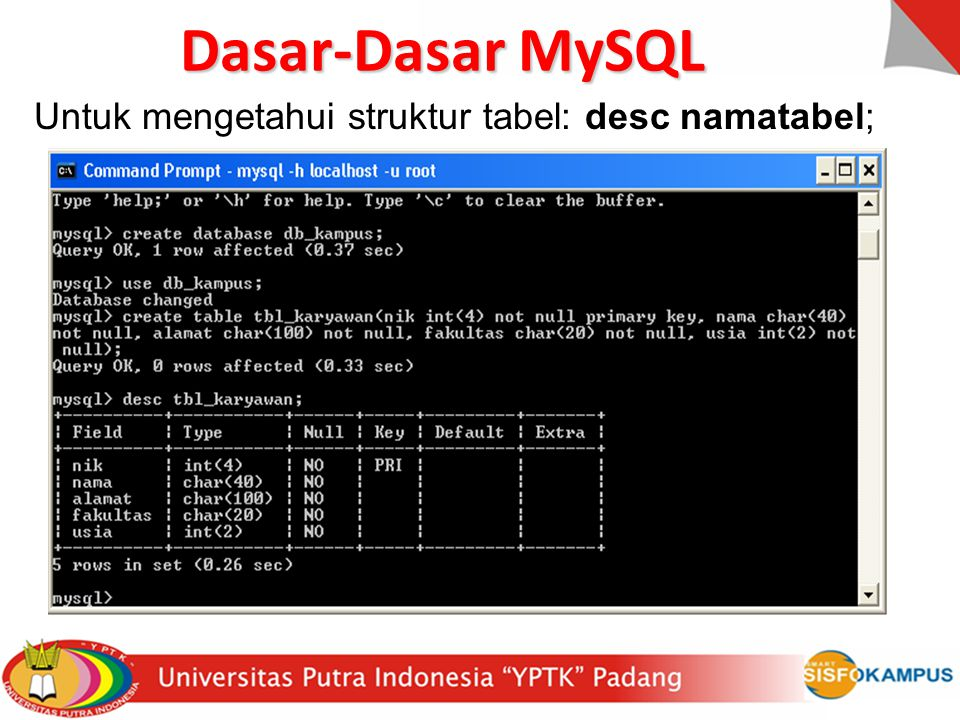 Dasar-Dasar MySQL Untuk mengetahui struktur tabel: desc namatabel;