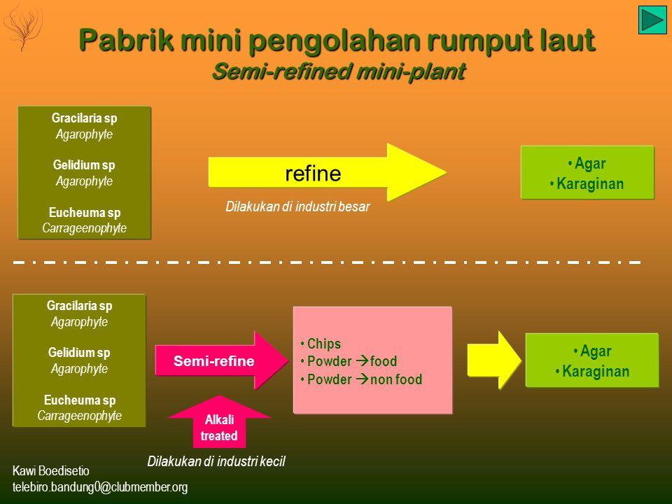 Pabrik mini pengolahan rumput laut Semi-refined mini-plant