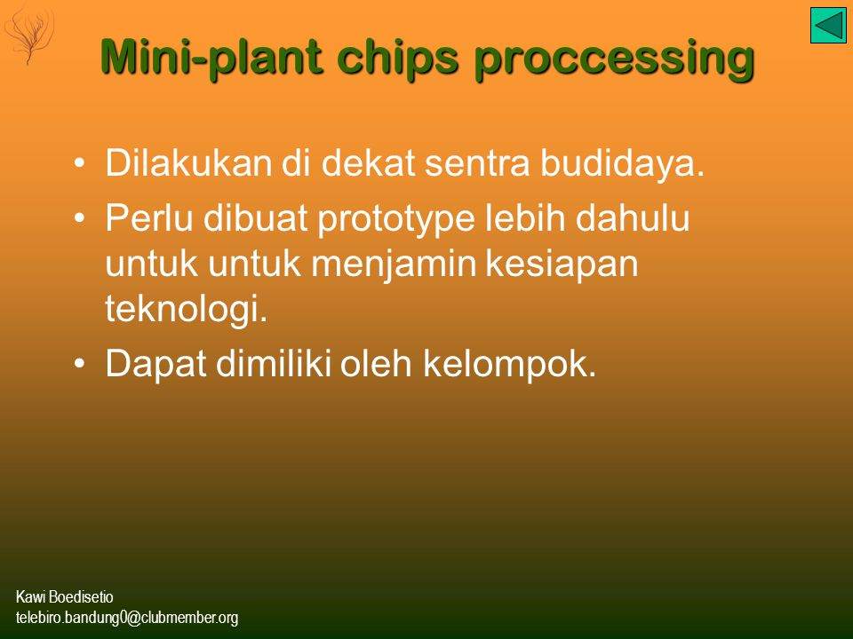 Mini-plant chips proccessing