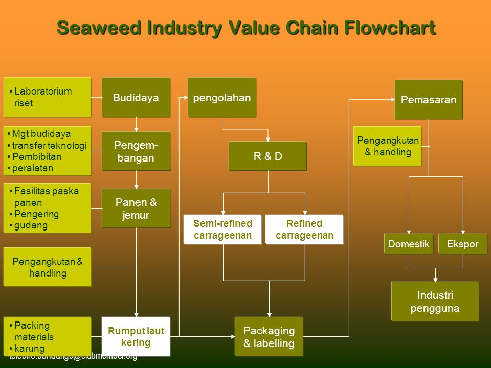 Seaweed Industry Value Chain Flowchart