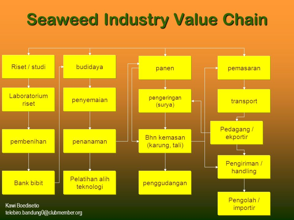 Seaweed Industry Value Chain