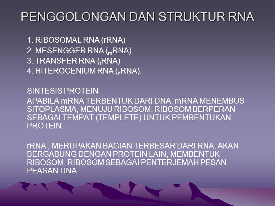 PENGGOLONGAN DAN STRUKTUR RNA