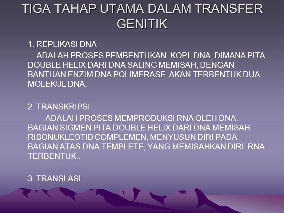 TIGA TAHAP UTAMA DALAM TRANSFER GENITIK