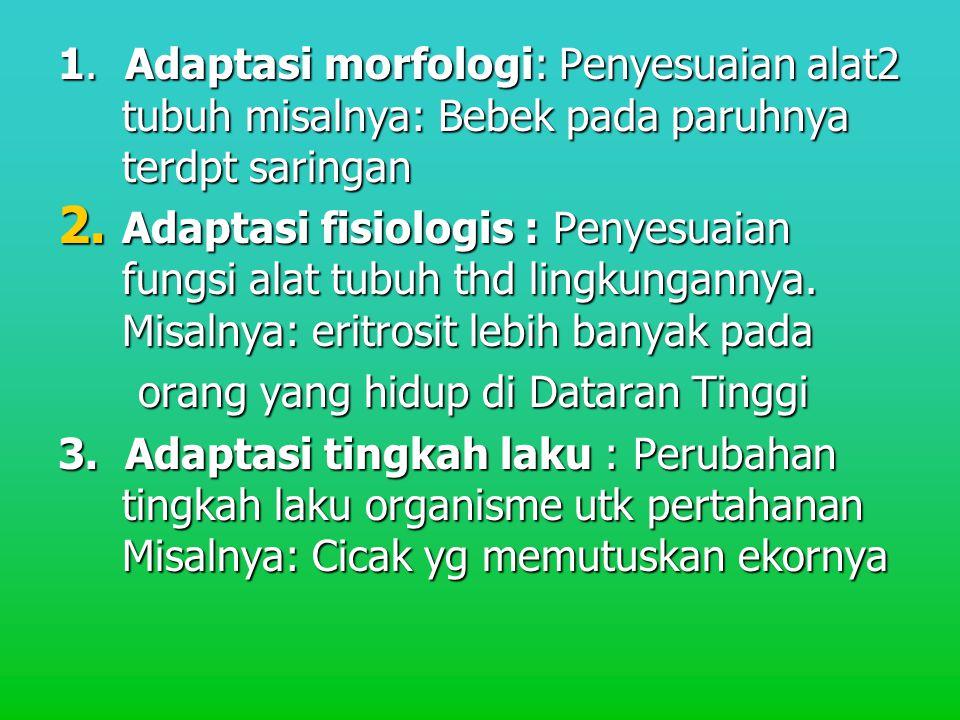 1. Adaptasi morfologi: Penyesuaian alat2 tubuh misalnya: Bebek pada paruhnya terdpt saringan