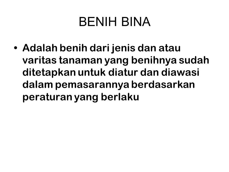 BENIH BINA