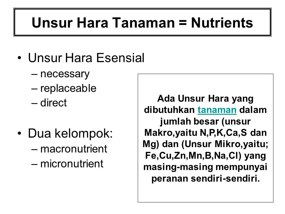 Unsur Hara Tanaman = Nutrients