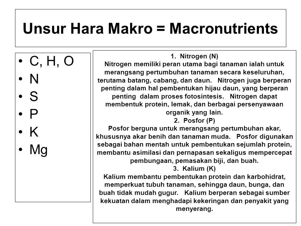 Unsur Hara Makro = Macronutrients