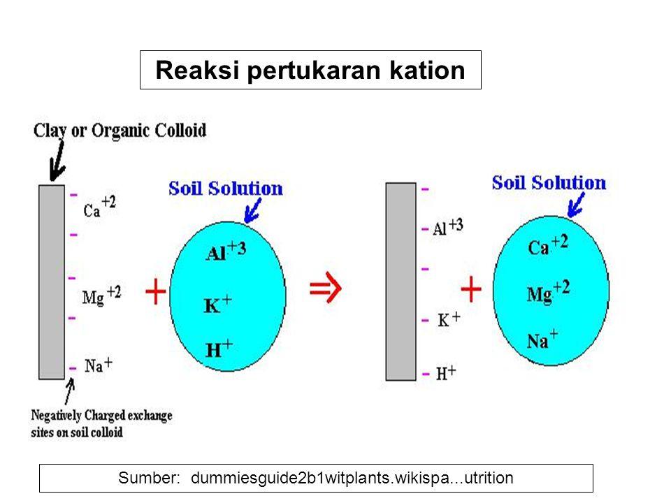 Reaksi pertukaran kation