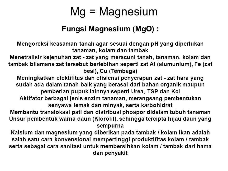 Mg = Magnesium Fungsi Magnesium (MgO) :