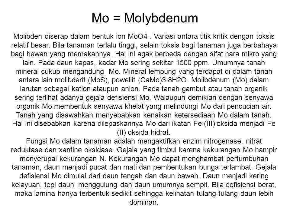 Mo = Molybdenum