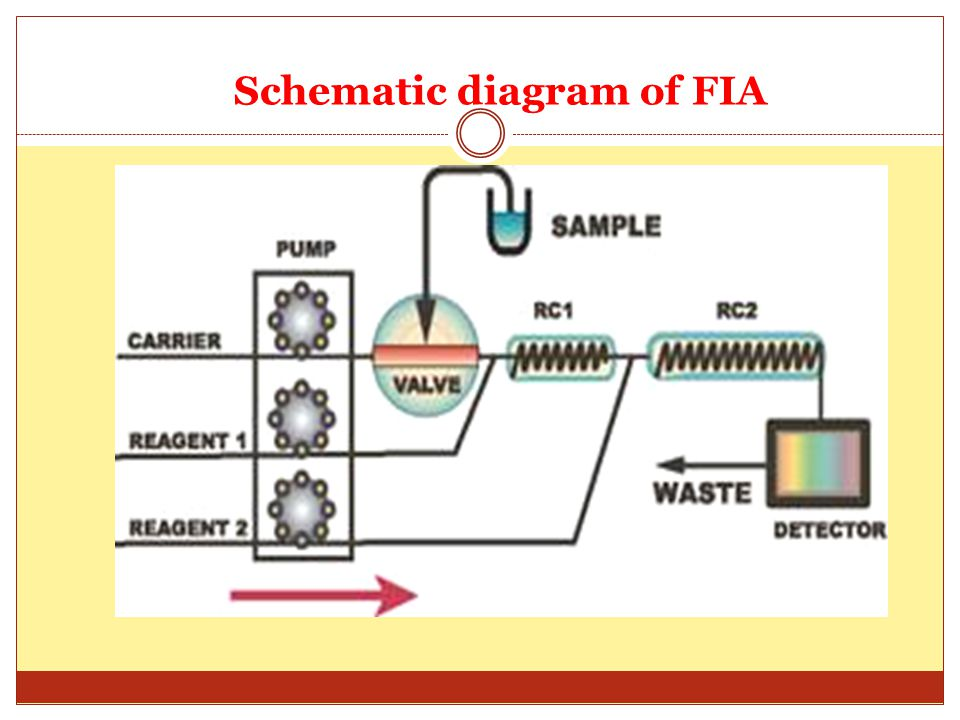 Schematic diagram of FIA