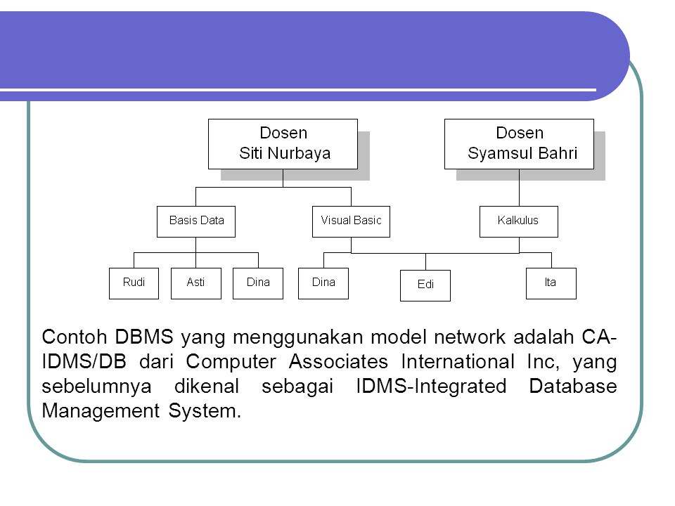 Contoh DBMS yang menggunakan model network adalah CA-IDMS/DB dari Computer Associates International Inc, yang sebelumnya dikenal sebagai IDMS-Integrated Database Management System.