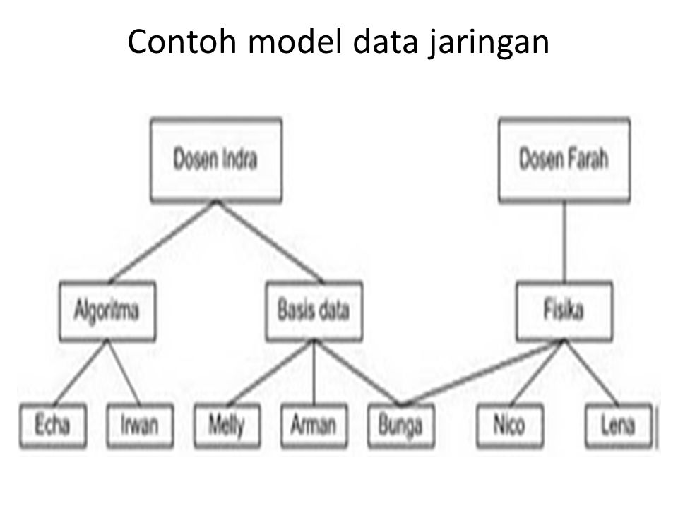 Contoh model data jaringan