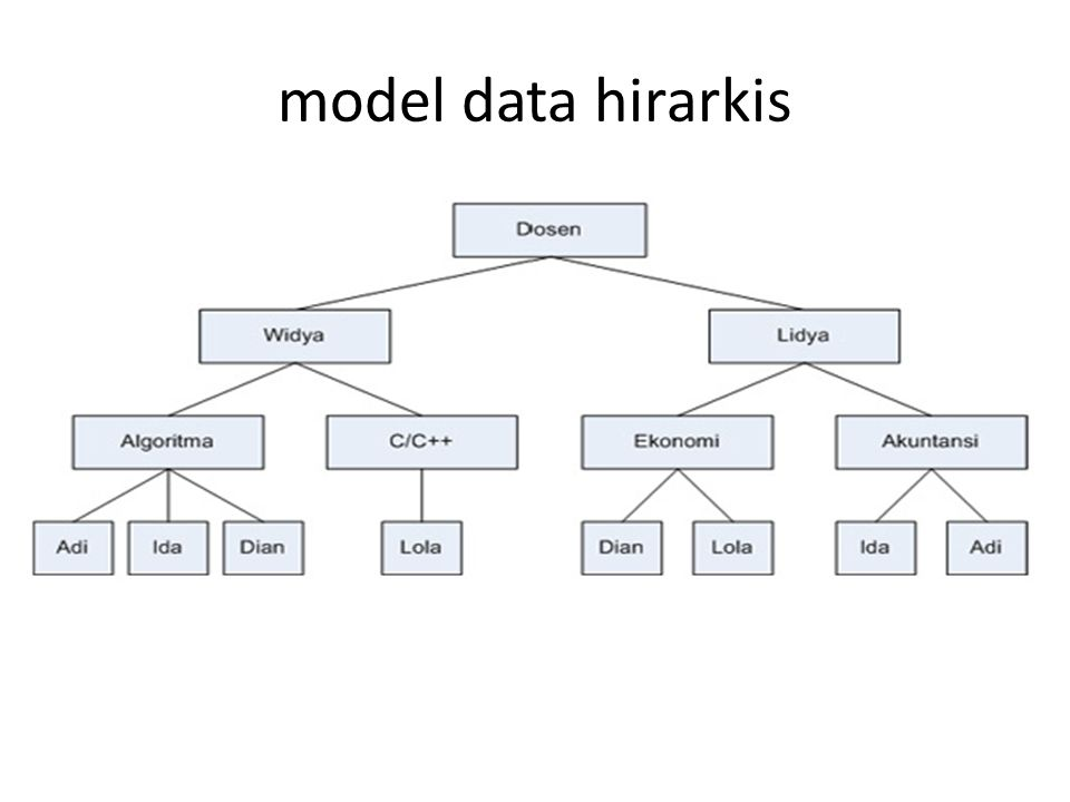 model data hirarkis