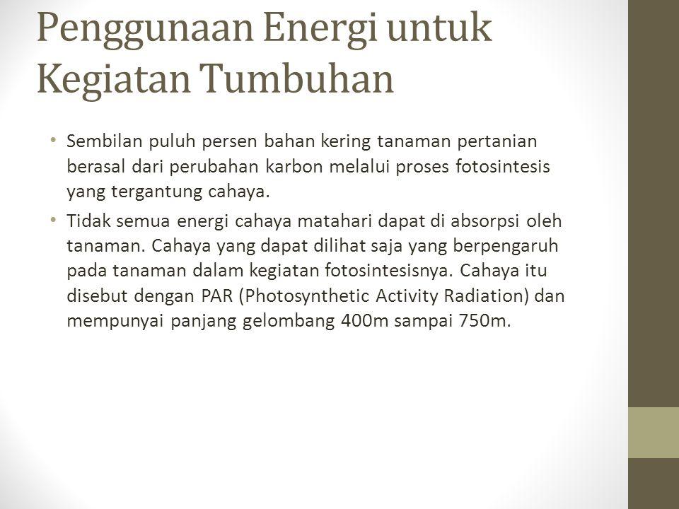 Penggunaan Energi untuk Kegiatan Tumbuhan