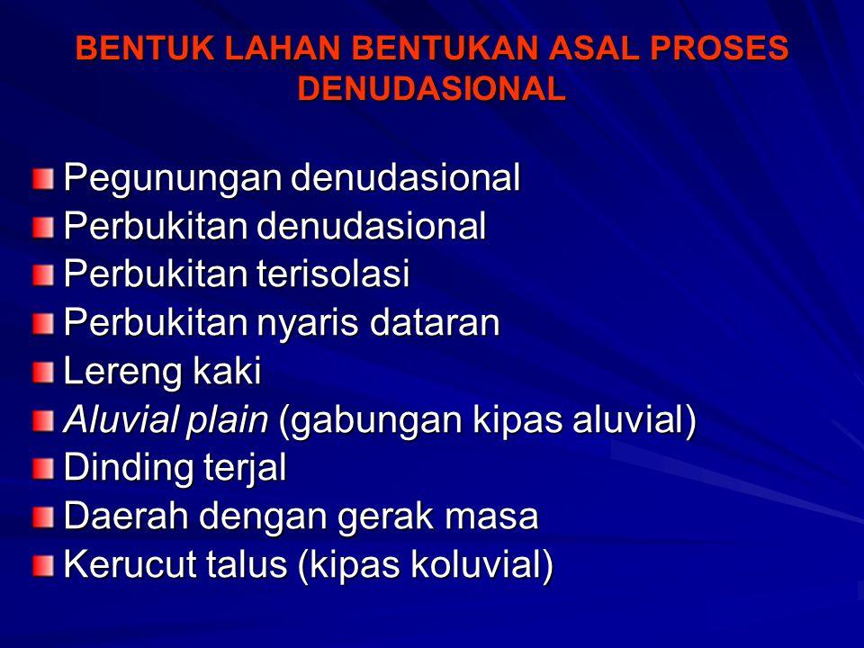 BENTUK LAHAN BENTUKAN ASAL PROSES DENUDASIONAL