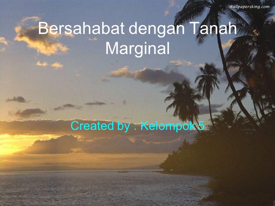 Bersahabat dengan Tanah Marginal