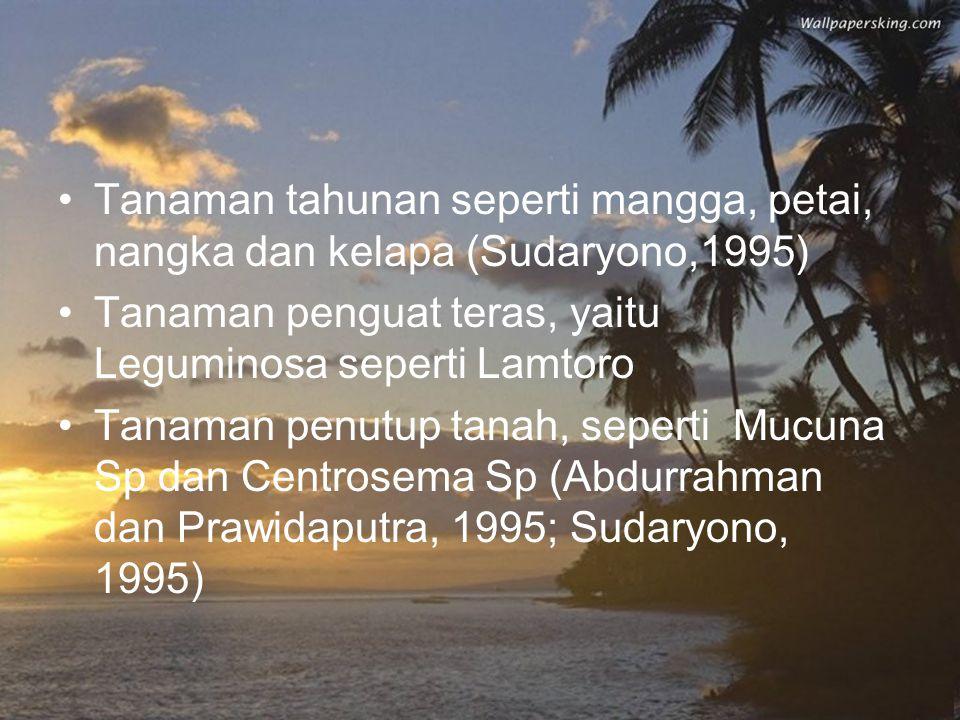 Tanaman tahunan seperti mangga, petai, nangka dan kelapa (Sudaryono,1995)