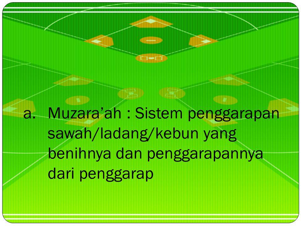 Muzara'ah : Sistem penggarapan sawah/ladang/kebun yang benihnya dan penggarapannya dari penggarap