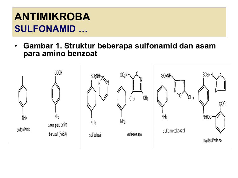 ANTIMIKROBA SULFONAMID …
