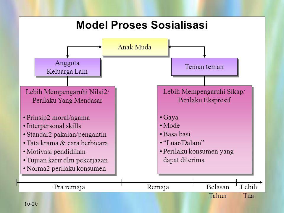 Model Proses Sosialisasi
