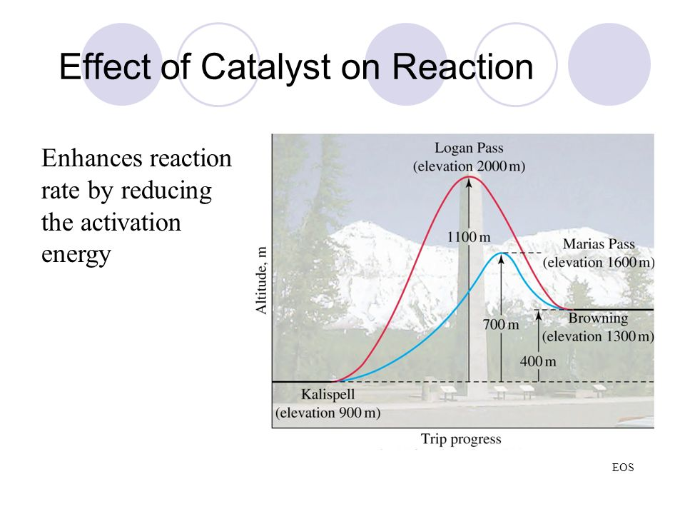Effect of Catalyst on Reaction