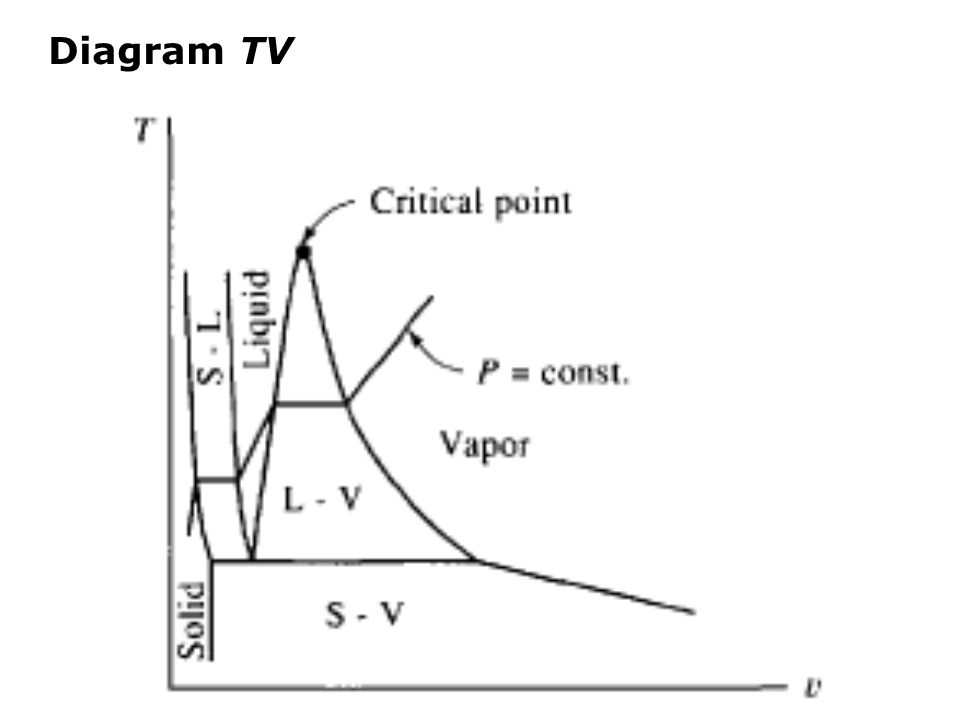 Diagram TV