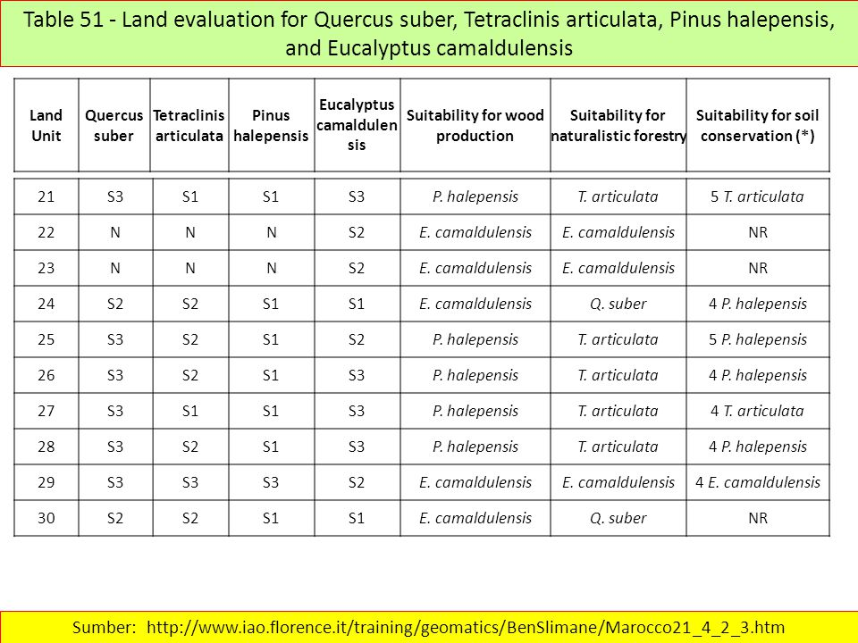 Table 51 - Land evaluation for Quercus suber, Tetraclinis articulata, Pinus halepensis, and Eucalyptus camaldulensis